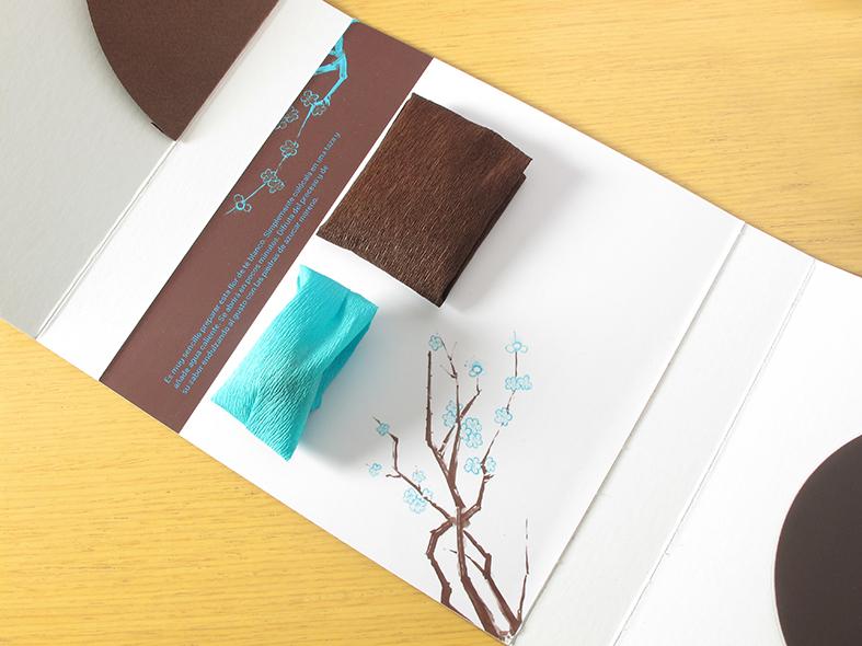 packaging-originales-3