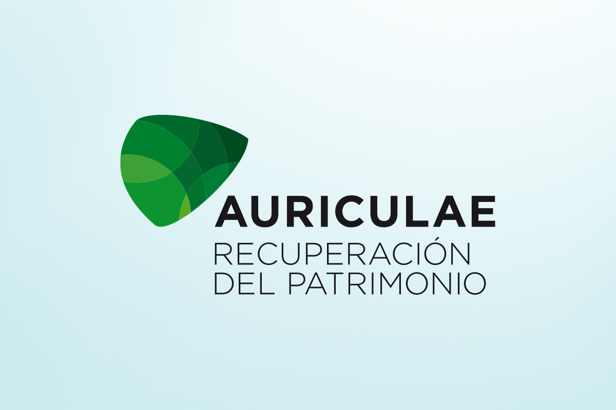 logo-proposal-OCNE-4