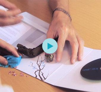 Video de celebración de nuestro aniversario para dispositivos móviles. Tea for two - estudio de diseño gráfico.
