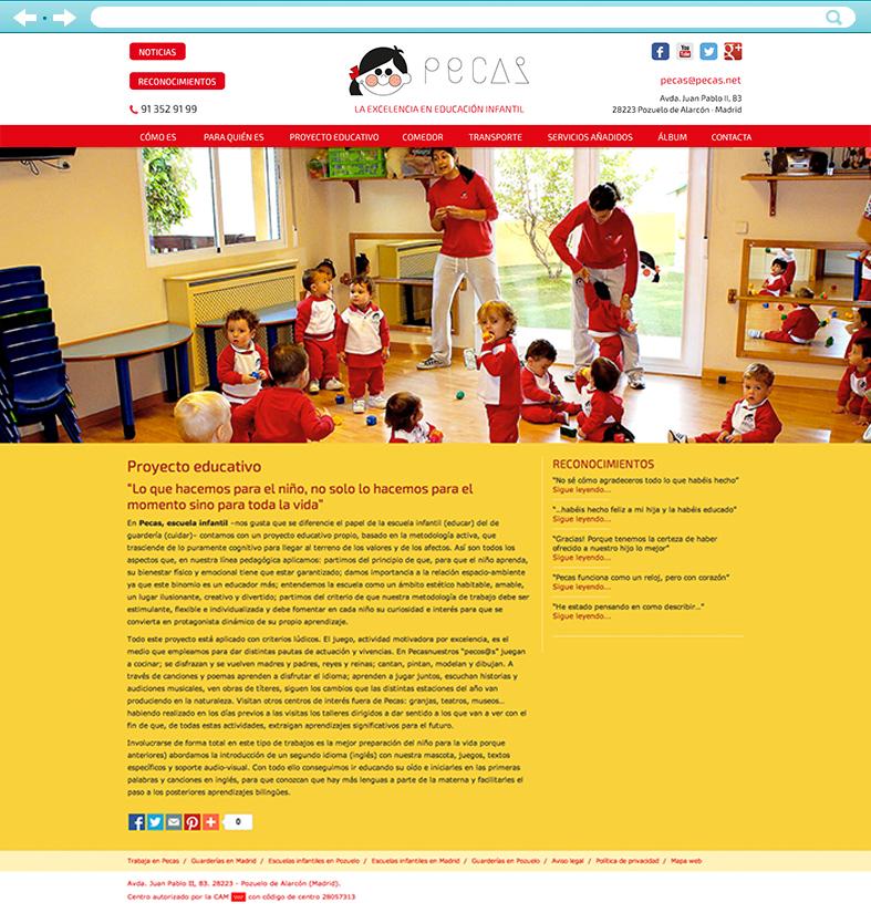 Desarrollo de la web de Pecas 02